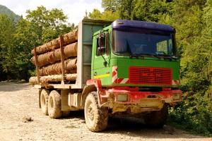 masina lemne